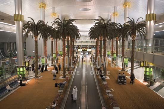 phoca_thumb_l_specialflowers_palm_airport_dubai (1).jpg