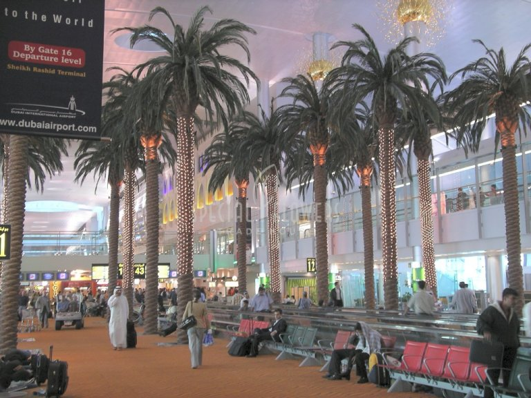 phoca_thumb_l_specialflowers_palm_airport_dubai.jpg